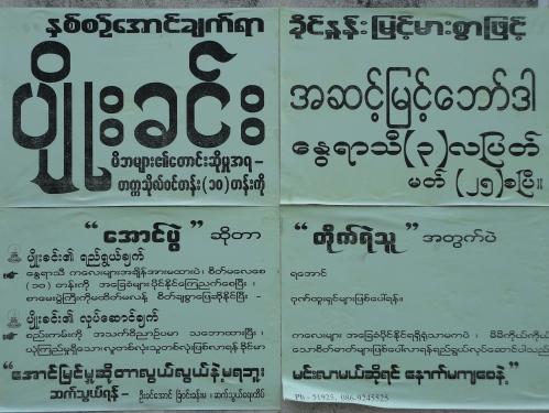 Burmese Flyers